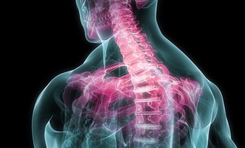 Top 3 Factors to Seek Chiropractic Care