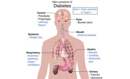 Top 8 easy ways to reverse your diabetes
