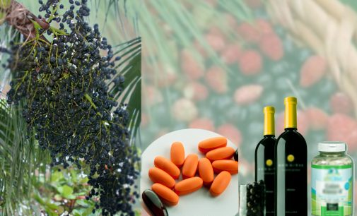 How Acai Berry Operates For Body Weight Loss