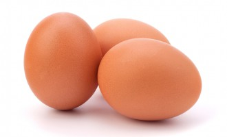 Five Important Facts about Egg You Must Know