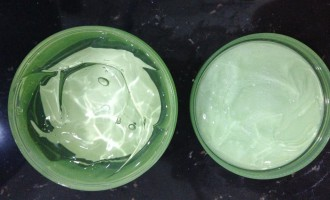 How Aloe Vera Herb is Beneficial for Pores And Skin