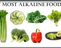 Top 7 Alkaline Foods You Should Be Eating Everyday!!